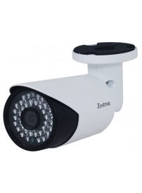 1.3MP IP Weatherproof Camera (ZIW130)